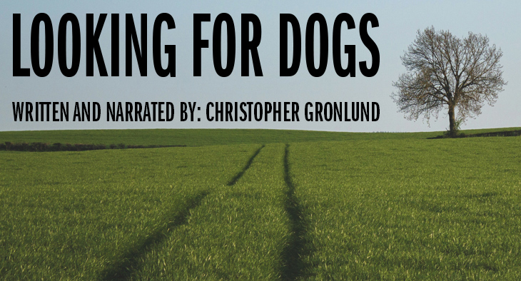 "A green field - ""Looking for Dogs"" Written and Narrated by Christopher Gronlund"